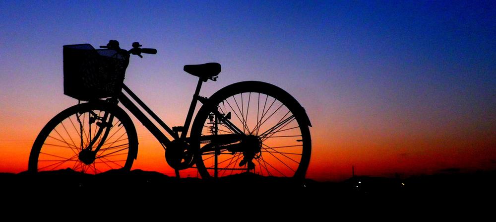 たまい接骨院自転車02